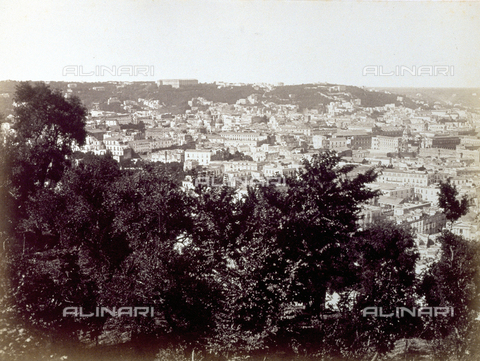 PDC-F-001819-0000 - Sweeping panorama of Naples taken from the surrounding high ground. In the foreground thick wooded vegetation - Data dello scatto: 1860-1880 ca. - Archivi Alinari, Firenze
