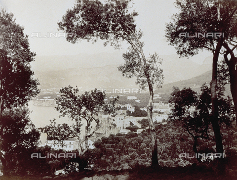 PDC-F-001829-0000 - View of Sorrento taken among some trees - Data dello scatto: 1860-1880 ca. - Archivi Alinari, Firenze