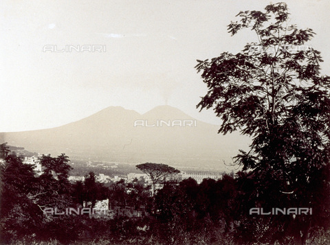 PDC-F-001831-0000 - Panorama of Naples, thick wooded vegetation in the foreground. The silhouette of Vesuvius in the background - Data dello scatto: 1860-1880 ca. - Archivi Alinari, Firenze