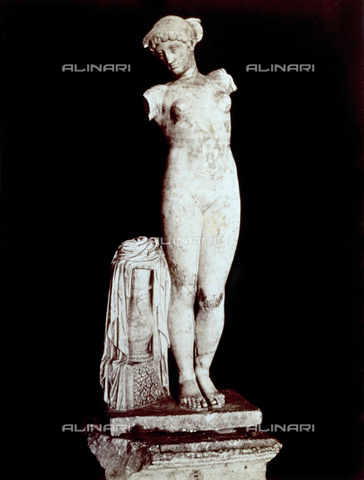 PDC-F-002263-0000 - L'immagine riproduce la statua di 'Venere Esquilina' risalente all'inizio dell'impero. La scultura, mancante delle braccia, ha accanto un piedistallo sul quale è appoggiata una veste. L'opera è conservata nel museo del 'Palazzo dei Conservatori'(Musei Capitolini) a Roma. - Data dello scatto: 18960-1880 - Archivi Alinari, Firenze