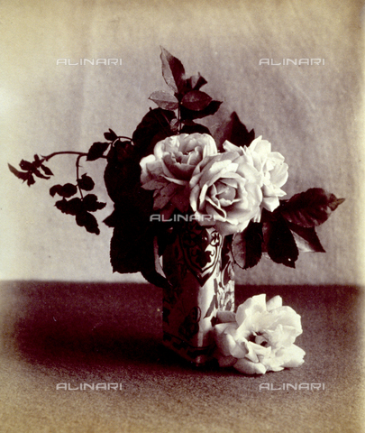 PDC-F-004135-0000 - Natura morta con rose. I fiori sono collocati all'interno di un vaso decorato di forma triangolare - Data dello scatto: 1880 ca. - Archivi Alinari, Firenze