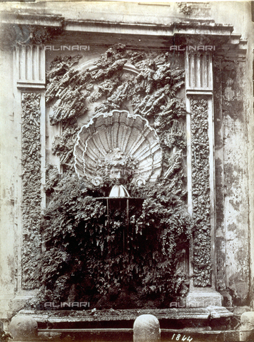 PDC-S-000461-0001 - Wall fountain with two pilasters at the sides. The water flows from a gargoyle placed at the base of a sculpted shell. The work is completed by tuff stone applications and a flourishing maidenhair fern - Data dello scatto: 1870-1890 ca. - Archivi Alinari, Firenze