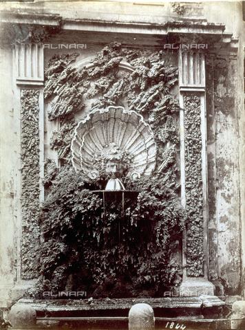 PDC-S-000461-0001 - Fontana a parete delimitata ai lati da due lesene. L'acqua sgorga da un mascherone posto alla base di una conchiglia scolpita. L'insieme è completato da applicazioni di tufo e da una rigogliosa pianta di capelvenere - Data dello scatto: 1870-1890 ca. - Archivi Alinari, Firenze