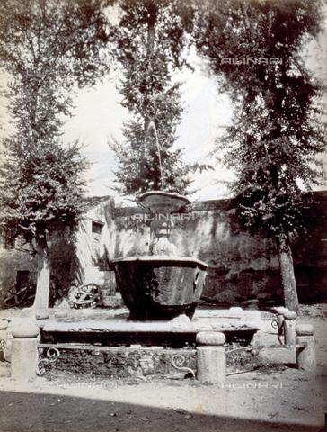 PDC-S-000461-0014 - Fontana nel convento di san Cosimato - Data dello scatto: 1870-1890 ca. - Archivi Alinari, Firenze