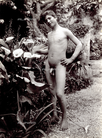 PDC-S-000865-0002 - Full-length portrait of a nude adolescent. The young man is posing in a garden, near a calla plant - Data dello scatto: 1890 ca. - Archivi Alinari, Firenze