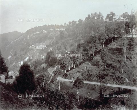 PDC-S-003986-0004 - Scorcio di un'area collinare nei dintorni di Darjeeling, in India - Data dello scatto: 1880-1890 - Archivi Alinari, Firenze