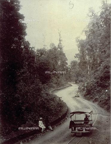 PDC-S-003986-0006 - Un breve tratto della strada che conduce a Darjeeling, in India - Data dello scatto: 1880-1890 - Archivi Alinari, Firenze