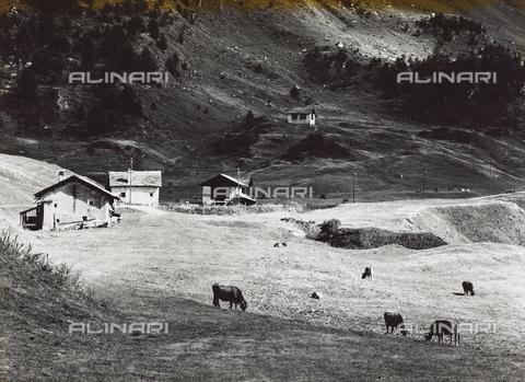 PFA-F-001477-0000 - Paesaggio montano, Engadina, Canton dei Grigioni, Svizzera - Data dello scatto: 12/1989 - Archivi Alinari, Firenze