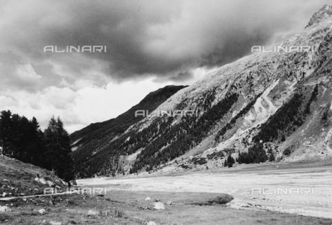 PFA-F-001479-0000 - Val Roseg, Engadina, Canton dei Grigioni, Svizzera - Data dello scatto: 08/1992 - Archivi Alinari, Firenze