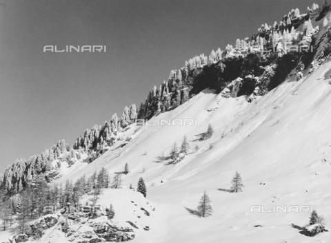 PFA-F-001495-0000 - Paesaggio innevato, Engadina, Canton dei Grigioni, Svizzera - Data dello scatto: 12/1990 - Archivi Alinari, Firenze