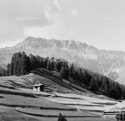 PFA-F-001511-0000 - Paesaggio montano, Engadina, Canton dei Grigioni, Svizzera - Data dello scatto: 07/1991 - Archivi Alinari, Firenze