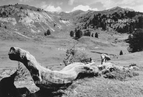 PFA-F-001516-0000 - Paesaggio montuoso, Engadina, Canton dei Grigioni, Svizzera - Data dello scatto: 08/1991 - Archivi Alinari, Firenze