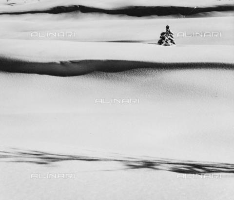 PFA-F-001562-0000 - Paesaggio innevato, Engadina, Canton dei Grigioni, Svizzera - Data dello scatto: 12/1992 - Archivi Alinari, Firenze