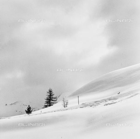 PFA-F-001564-0000 - Paesaggio innevato, Engadina, Canton dei Grigioni, Svizzera - Data dello scatto: 12/1992 - Archivi Alinari, Firenze