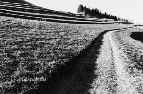 PFA-F-001589-0000 - Paesaggio dell' Engadina, Canton dei Grigioni, Svizzera - Data dello scatto: 08/1991 - Archivi Alinari, Firenze