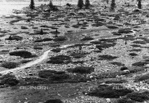 PFA-F-001619-0000 - Val Roseg, Engadina, Canton dei Grigioni, Svizzera - Data dello scatto: 08/1992 - Archivi Alinari, Firenze