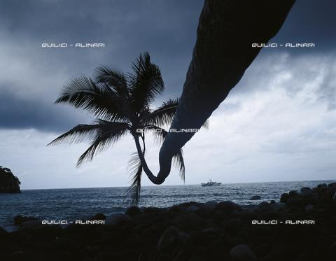 QFA-F-000110-0000 - Ormeggio sottovento a Cocos Island, Oceano Pacifico - Data dello scatto: 1992 - Folco Quilici © Fratelli Alinari