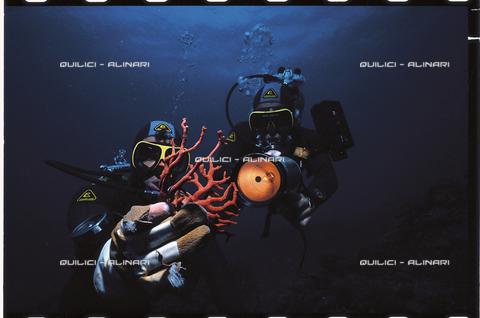 """QFA-S-002242-00FQ - Un """"corallaro"""" risale dall'alto fondale di Capo Caccia. Il """"corallium rubrum"""", da lui raccolto, è illuminato durante una ripresa filmata. Sardegna - Data dello scatto: 1967 - Folco Quilici © Fratelli Alinari"""