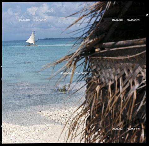 """QFA-S-041409-00SP - Atollo di Ranghiroa. Pahi a vela davanti ad un """"Farè"""" abbandonato del villaggio di Avatorù. Polinesia - Data dello scatto: 1969 - Folco Quilici © Fratelli Alinari"""