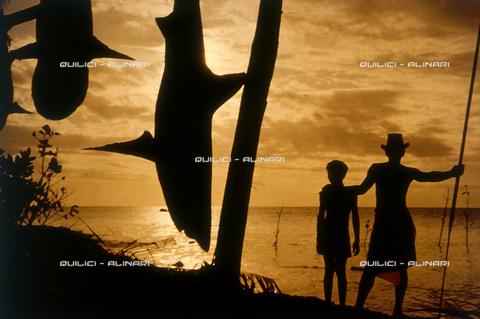 QFA-S-053026-00SP - Isole Tuamotu. Rangiroa. Cattura di squalo tigre. - Data dello scatto: 1959 - Folco Quilici © Fratelli Alinari