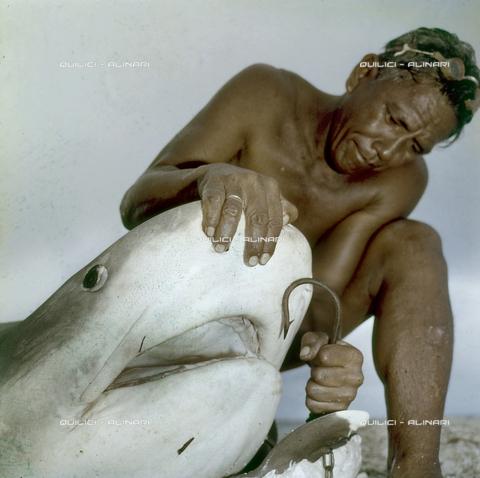 QFA-S-053054-00SP - Isole Tuamotu. Rangiroa. Cattura di squalo tigre. - Data dello scatto: 1959 - Folco Quilici © Fratelli Alinari