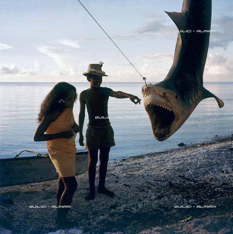 QFA-S-053067-00SP - Isole Tuamotu. Rangiroa. Cattura di squalo tigre. - Data dello scatto: 1959 - Folco Quilici © Fratelli Alinari