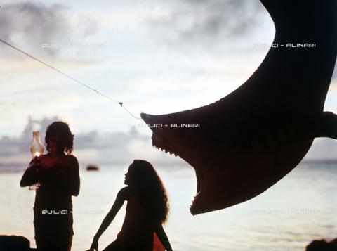 QFA-S-053085-00SP - Isole Tuamotu. Rangiroa. Cattura di squalo tigre. - Data dello scatto: 1959 - Folco Quilici © Fratelli Alinari