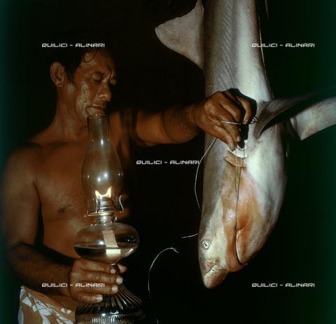 QFA-S-054404-00SP - Isole Tuamotu. Manihi. Pesca notturna all'amo, cattura di piccoli squali - Data dello scatto: 1955 - Folco Quilici © Fratelli Alinari