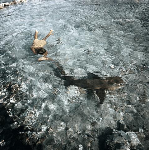 """QFA-S-054826-00SP - Il ragazzo interprete del film """"Ti-koyo e il suo pescecane"""" gioca con uno squalo nutrice (Nebrius ferrugineus) nelle acque basse dell'atollo di Manihi. Arcipelago delle Tuamutu. Polinesia - Data dello scatto: 1961 - Folco Quilici © Fratelli Alinari"""
