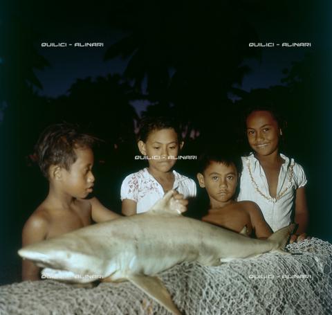 QFA-S-055402-00SP - Tuamotu Islands. Rangiroa. Children and small sharks caught. - Data dello scatto: 1955 - Folco Quilici © Fratelli Alinari