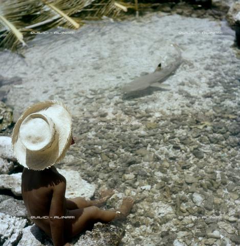 QFA-S-055410-00SP - Tuamotu Islands. Rangiroa. Children and small sharks caught. - Data dello scatto: 1955 - Folco Quilici © Fratelli Alinari