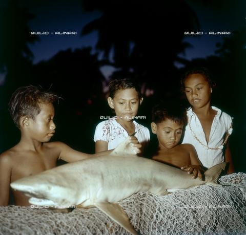 QFA-S-055413-00SP - Tuamotu Islands. Rangiroa. Children and small sharks caught. - Data dello scatto: 1955 - Folco Quilici © Fratelli Alinari