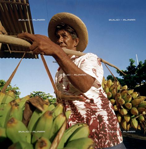 QFA-S-061502-00SP - Isole della Società. Isole del Vento. Tahiti. Papeete. Frutta per il mercato di Papeete. - Data dello scatto: 1955 - Folco Quilici © Fratelli Alinari