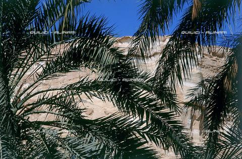 QFA-S-DIA072-00EG - Oasi di Siwa. Il paese - Data dello scatto: 2002 - Folco Quilici © Fratelli Alinari