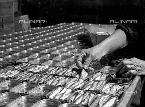 RCB-F-002443-0000 - Confezionamento del pesce in scatola - Archivio Bruni/Gestione Archivi Alinari, Firenze