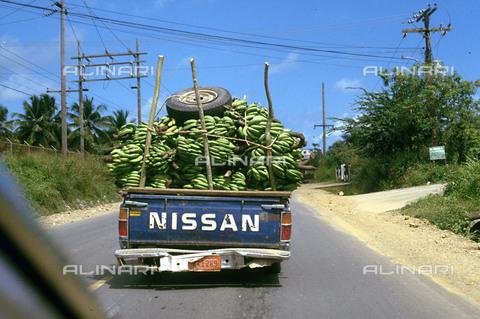 RCS-S-CP0023-2294 - Un auto che trasporta un carico di banane a Samanà, nella Repubblica Dominicana - Data dello scatto: 1990-1999 - RCS / Gestione Archivi Alinari, Firenze