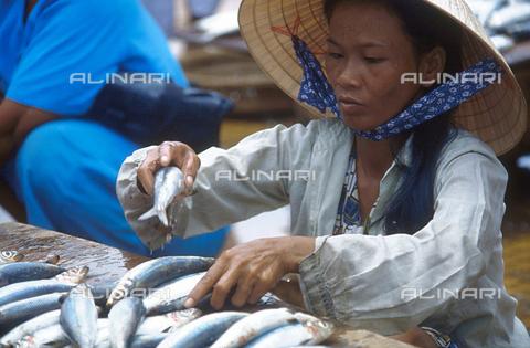 RCS-S-CP0065-6490 - Venditrice di pesce al mercato di Ha Tien. Vietnam - Data dello scatto: 1990-1999 - RCS / Gestione Archivi Alinari, Firenze