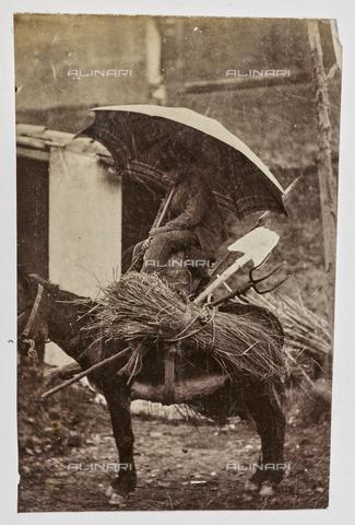 REA-F-001084-0000 - Anziano su un asino che trasporta legna - Data dello scatto: 1880-1890 - Raccolte Museali Fratelli Alinari (RMFA)-archivio Roesler Franz, Firenze