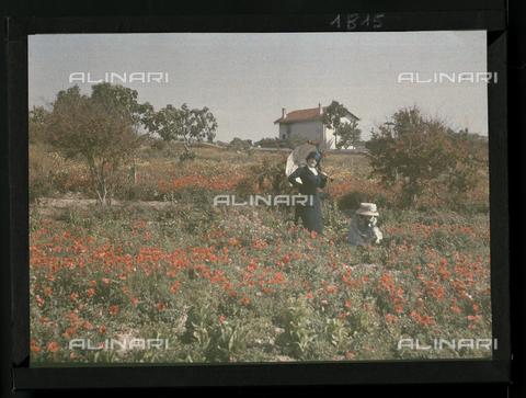 RGD-F-001815-0000 - Donne in un campo di papaveri - Data dello scatto: 1880-1900 - Archivi Alinari, Firenze