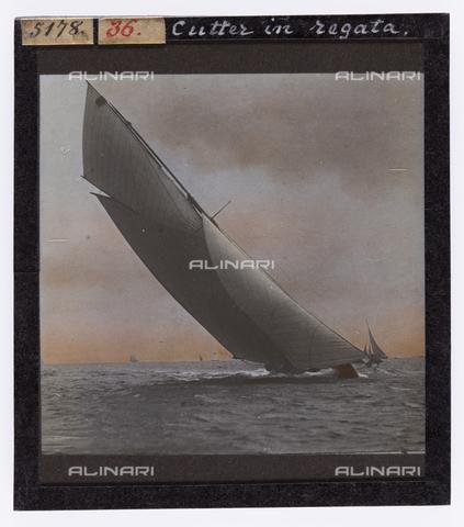 RGD-S-000036-5178 - Cutter durante una regata a Portoferraio, Isola d'Elba - Data dello scatto: 1890-1910 - Raccolte Museali Fratelli Alinari (RMFA)-donazione Roster, Firenze