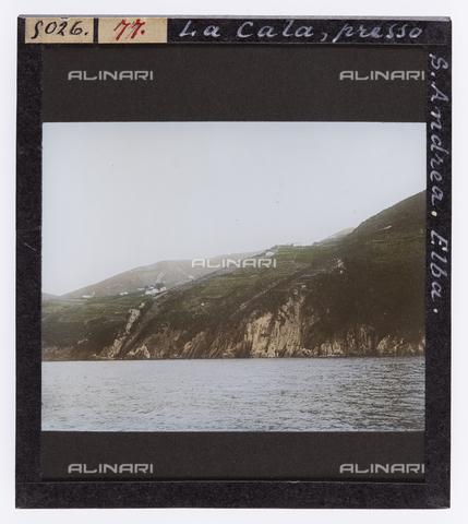 RGD-S-000077-5026 - Cove at St. Andrea, Elba Island - Data dello scatto: 1890-1910 - Archivi Alinari, Firenze