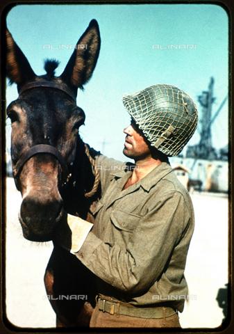 RVA-S-019821-0002 - Seconda Guerra Mondiale: soldato con un mulo a Palermo - Data dello scatto: 1943 - Bilderwelt / Roger-Viollet/Alinari