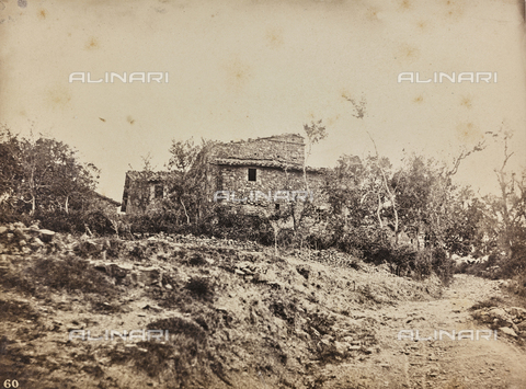 SCC-F-001259-0000 - Farmhouse in the Tuscan countryside - Data dello scatto: 1870-1875 - Archivi Alinari, Firenze