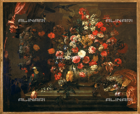 SEA-F-000261-0000 - 'Still life with flowers and fruit', painting by Bartolomeo Bimbi, formerly in the Accademia dei Georgofili, in Florence. Now in the Museum of Still Life (Natura Morta), deposits. - Date of photography: 1996 - Seat Archive/Alinari Archives, Reproduced with the permission of Ministero per i Beni e le Attività Culturali