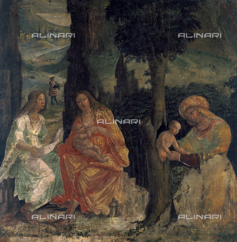 SEA-S-BS1984-0003 - The Birth of Adonis, fresco, Floriano Ferramola (1480-1528), Tosio-Martinengo Picture Gallery, Brescia - Date of photography: 1984 - Seat Archive/Alinari Archives