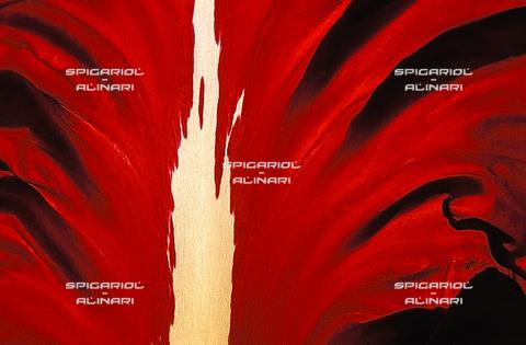SPA-F-001122-0000 - rosse fiammate@Radicchio di Verona Rosso Tardivo IGP