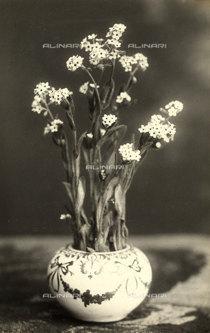 TCA-F-00193V-0000 - Vervains in a decorated vase.