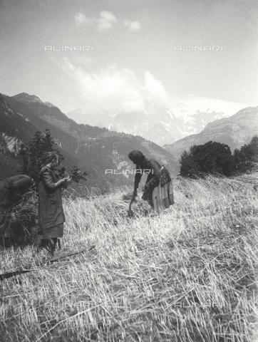 TCB-F-000656-0000 - Campi coltivati a Pré-Saint-Didier con sullo sfondo il Monte Bianco - Data dello scatto: 1930 ca. - Touring Club Italiano/Gestione Archivi Alinari