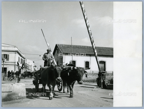 TCI-S-011765-AR03 - level crossing on the Olbia-sassari line, 1962 - Touring Club Italiano/Alinari Archives Management