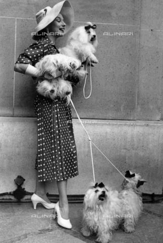 TOP-F-017582-0000 - Un'esibizione di cani a Parigi diventa un'esibizione di moda. 10 luglio 1954, Generale - Data dello scatto: 10/07/1954 - 2005 / TopFoto / Archivi Alinari